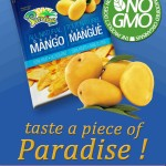 Paradise All Natural Non-GMO No Sugar Added Dried Mango